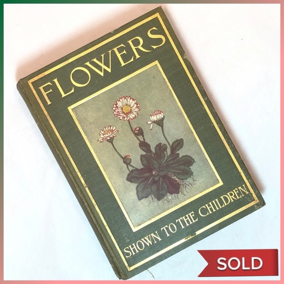 Vintage Other - Flowers Shown to the Children 1908 - Color Plates